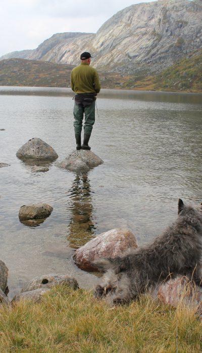 Fiske i fjellvann